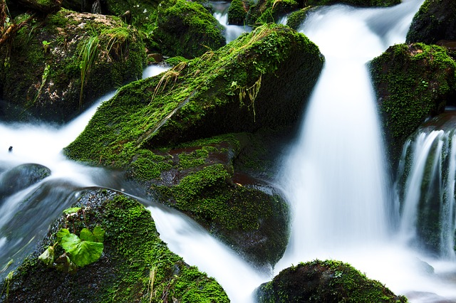 Flowing Creek Forest Green Flow Landscape Falls